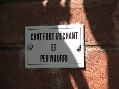 Images Comiques - Page 6 Sentier-chat-mechant